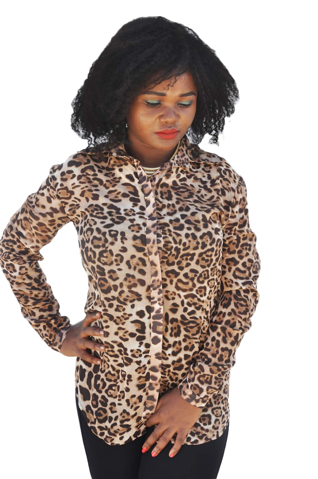 M0199 animalprint2 Blouses Tops Shirts maureens.com boutique